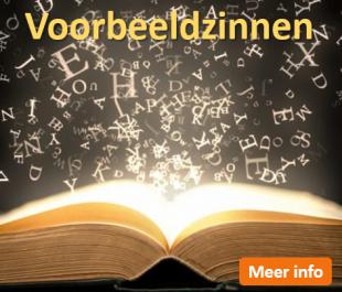 Afstudeergoeroes.nl - Voorbeeldzinnen