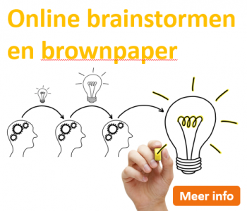 Afstudeergoeroes.nl - Online brainstormen en brownpapersessies met MS Teams